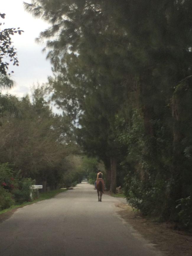 girl riding horse on street in Davie, Florida