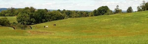 old waterford road farmland