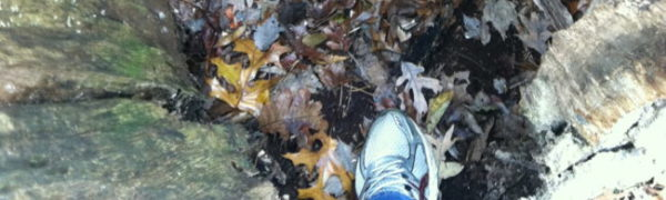 Civil War trench: McCool Travel