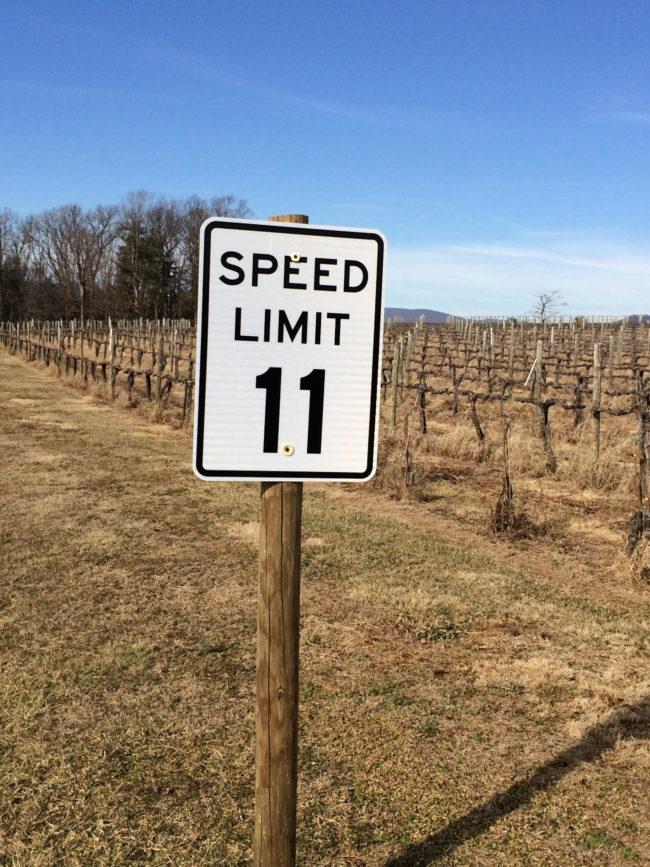 Grace Estate Winery, Wine Tasting Charlottesville Virginia