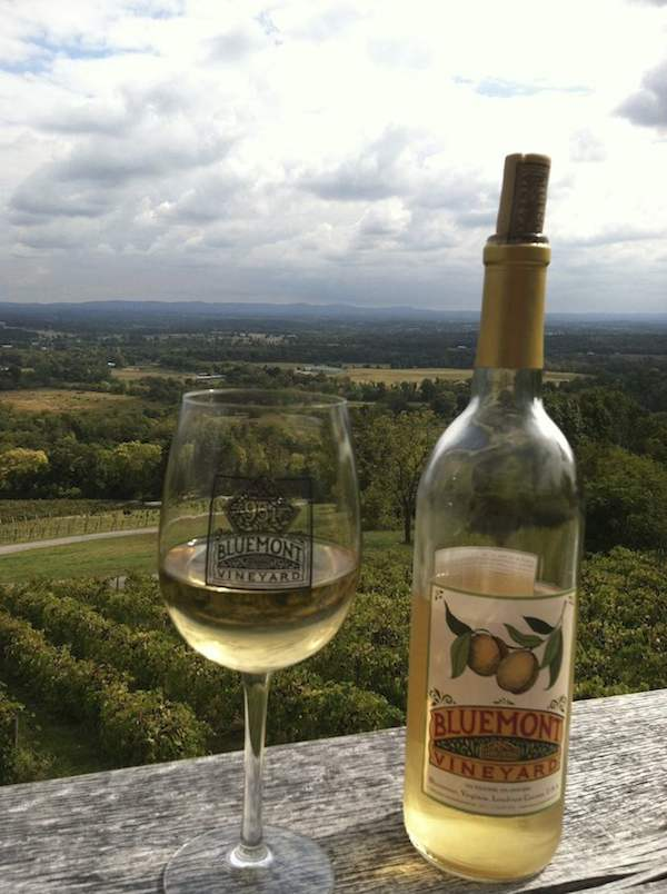 Bluemont Winery, Virginia