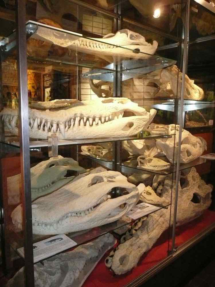 Fascinating Small Town Museums In Western Us Mccool Travel