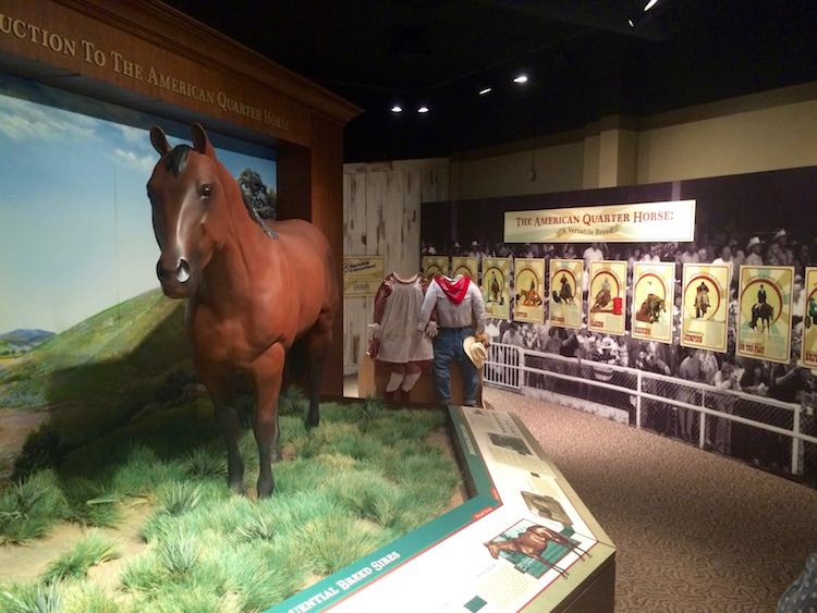 things to do in Amarillo: American Quarter Horse and Hall of Fame Museum