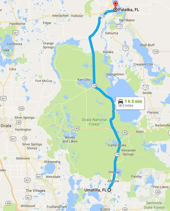 Scenic Drives in Florida: Ocala National Forest