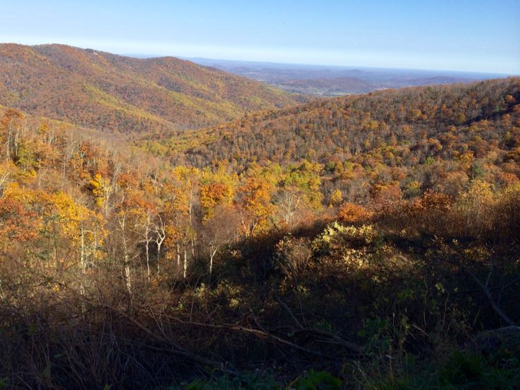Things to Do in Shenandoah Valley: Skyline Drive