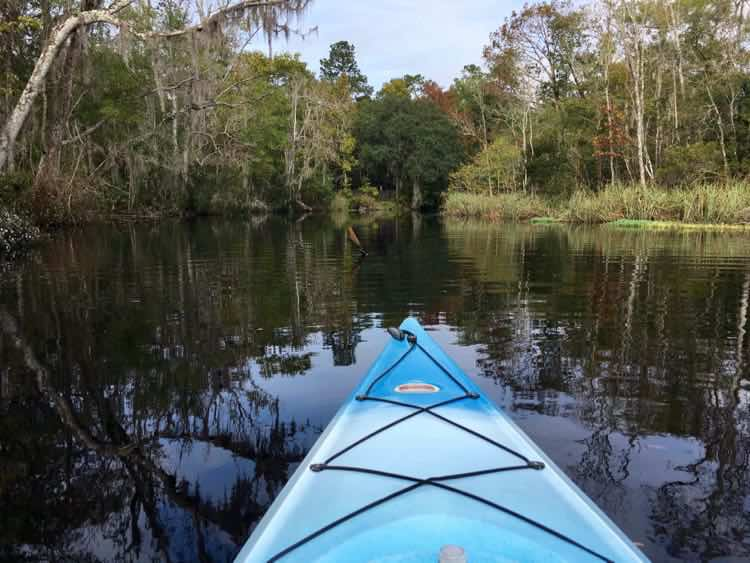 great travel experiences: Amelia Island Kayak Excursions