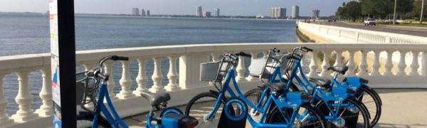 fun ways to see Tampa Florida: Bayshore Boulevard