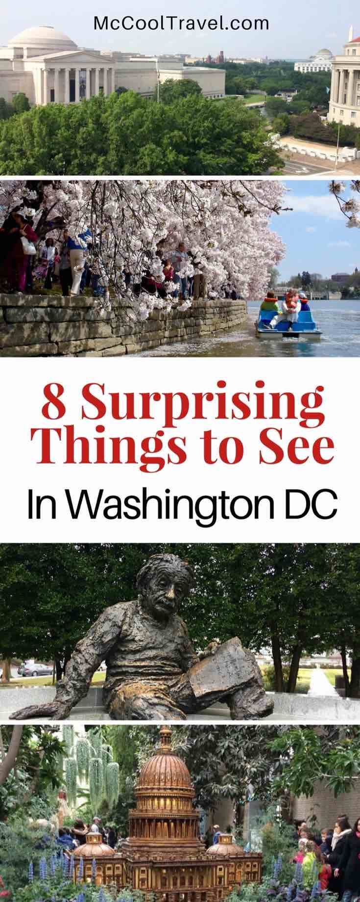 Surprising things to see in Washington DC. I have lived near DC for over 20 years and Expedia.com asked me for my surprising things to see in Washington DC.