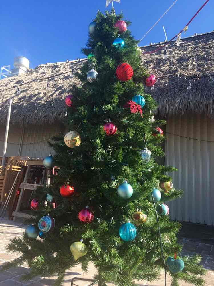 tropical christmas decorations florida edition