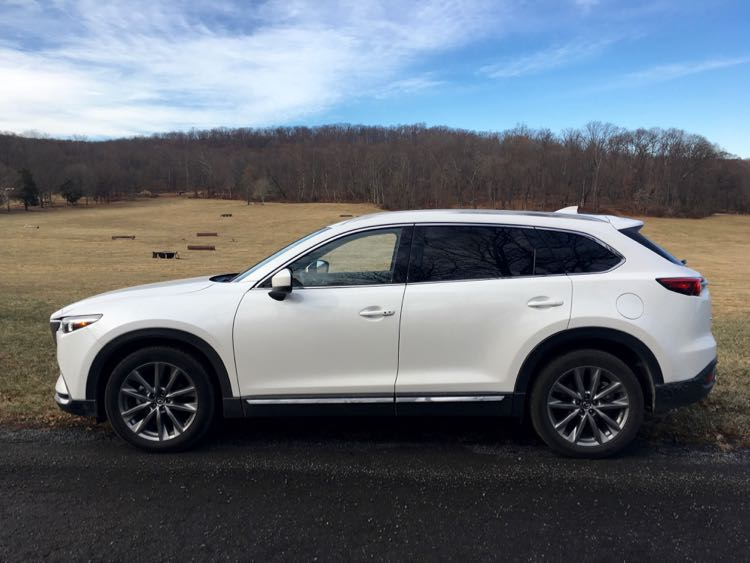 Mazda CX-9 and horse cross country jumps
