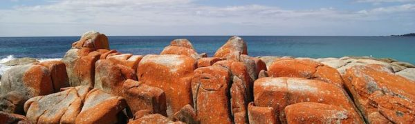 walking tours in Australia: Bay of Fires. Article by Victoria Lim for McCool Travel